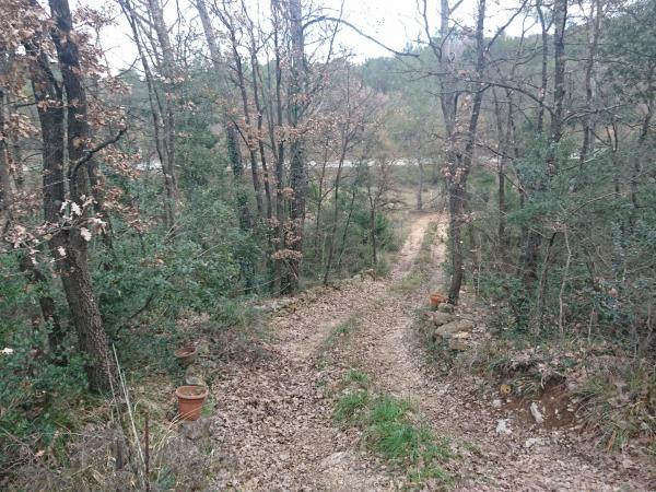 FLASSANS , terrain inconstructible boise de 5 hectares